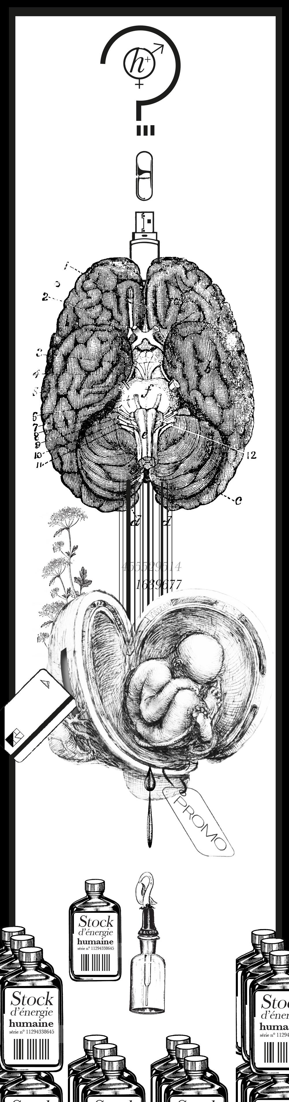 genetique-2frankenstein - Strange froots - la gazetteb - le CORPS GENTIQUE